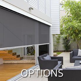 Ziptrak Options